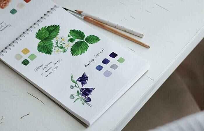 ノート植物の絵