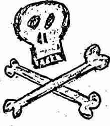 骸骨、ドクロ