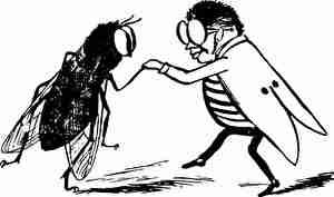 虫、博士、ダンス
