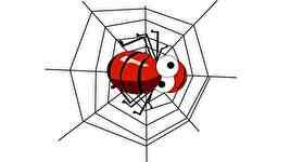 「蜘蛛」の英語表現25選!おなじみの【あれ】にも関係してるよ