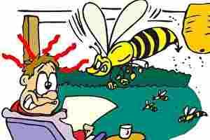 ハチ、危険