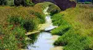 かなり細い川