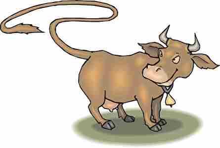 尻尾が長い牛