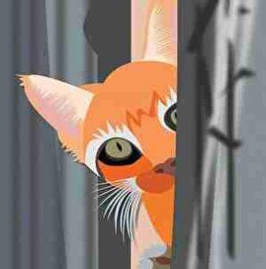 ドアに隠れるネコ