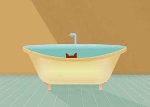 お風呂に隠れるイヌ、ネコ